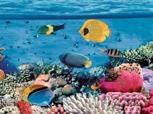Плитка Reef