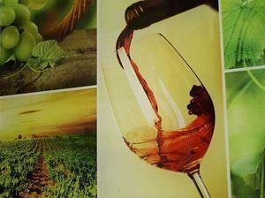Плитка Vineyard